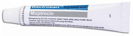 Salep Ikagen advanced image search results mims indonesia