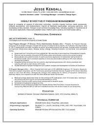 it manager resume here are project management resume exles technical it project