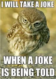 Owl Memes - listables owl memes join our group listables community facebook