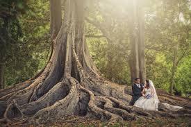 karan karen wedding adelaide botanic gardens wedding