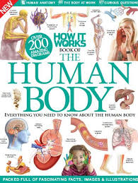 Anatomy Of Human Body Pdf Best 10 Anestesia Pdf Ideas On Pinterest Enfermeria Pdf