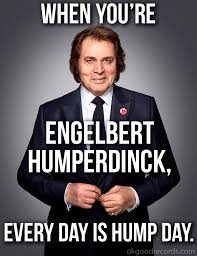 Hump Day Meme - when you re engelbert humperdinck every day is hump day ok