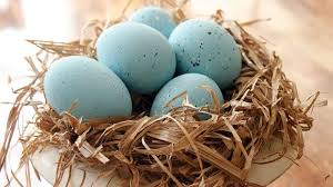 faux easter eggs faux blue bird eggs and nest eastereggs hometalk