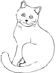 cat coloring pages images cat color page fotosbydavid com