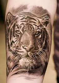 25 best tiger tattoos images on photos tiger
