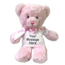engraved teddy bears personalized teddy pink mandys moon personalized gifts