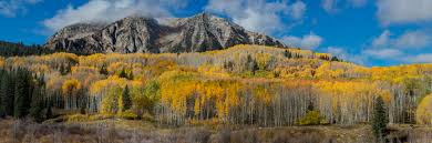 photographing colorado autumn mike jensen photography