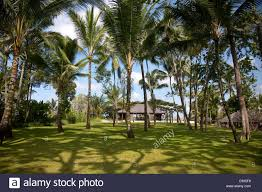 bali ubud the gardens of the luxury 5 star como shambhala