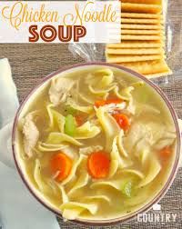 one pot chicken noodle soup the country cook
