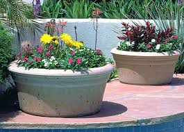 large concrete planter concrete planter bowl image source large concrete planter bowls