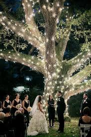 best 25 wedding trees ideas on wedding