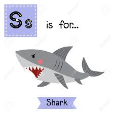 s letter tracing shark cute children zoo alphabet flash card