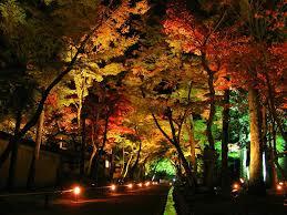 led landscape lighting cool image