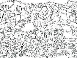 free coloring page of the rainforest tropical coloring pages chacalavong info