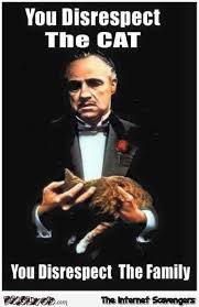 Godfather Meme - if you disrespect the cat funny godfather meme pmslweb