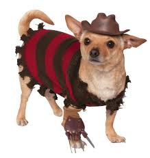Freddy Halloween Costumes Freddy Krueger Jason Voorhees Halloween Costumes Dogs Revealed