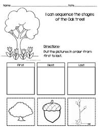 kindergarten sequencing worksheet picture sequence turtlediary
