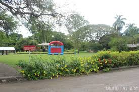 Botanical Garden Station by Hope Botanical Gardens In Kingston Plant Nursery Wedding Photos