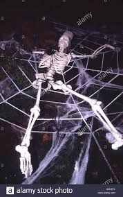 skeleton rests in a spider web on halloween night stock photo