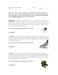 variation worksheet with answers the best and most comprehensive