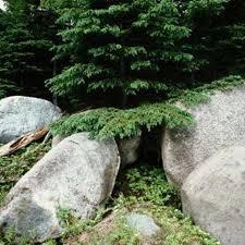 78 best fake rocks images on pinterest artificial rocks