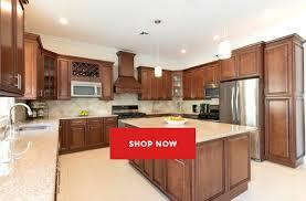 shop kitchen cabinets online fantastisch kitchen cabinets online shopping kitchens cheap discount