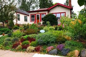 home design app cheats rain garden plants zone 5 5 home design app cheats dibz co