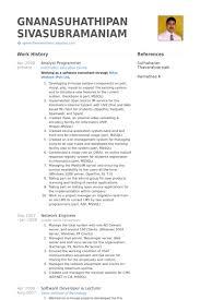 analyst programmer resume samples visualcv resume samples database