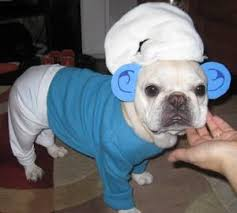 French Bulldog Costumes Halloween Grumpy Smurf Dog Smurfs