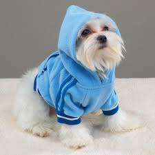 wholesale pet sweaters sweatershirts hoodies warm clothes