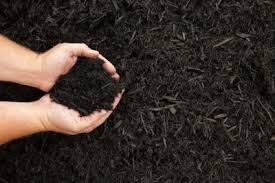 using organic mulch in gardens types of natural mulch