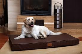materasso per cani cuccia letto materasso ortopedico 120cm animalmarketonline