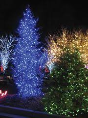 Multi Function Christmas Lights 8 Best Christmas Lights Images On Pinterest Christmas Lights