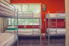 beds and beds beds and drinks hostel in miami beach