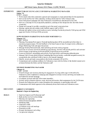 marketing skills resume division marketing manager resume sles velvet