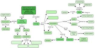 biomes concept map answers key 28 images arctic tundra biome