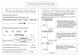 gcse photosynthesis topic worksheets by beckystoke teaching
