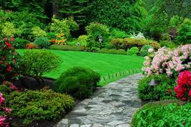 effect of color on mood color and mood design the garden you really want