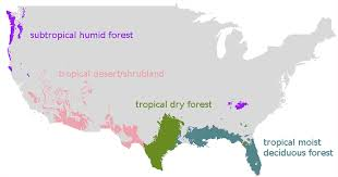Wsu Map Model Predicts How Forests Will Respond To Climate Change Wsu