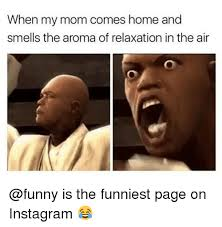 Funny Memes On Instagram - when my mom comes home and smells the aroma of relaxation in the