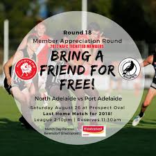 news and events the official north adelaide football club