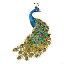 Peacock Colour Cushions Peacock Colors For Home Swnpa135 Peacock Embroidery Design