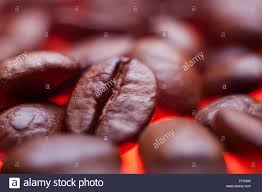 Beautiful Coffee Beautiful Coffee Seeds Close Up Background Stock Photo Royalty