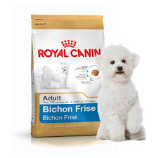bichon frise 17 years old royal canin dog food bichon frise 1 5kg amazon co uk pet supplies