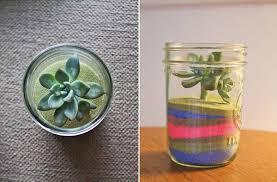 diy terrariums 7 sweet and simple ideas