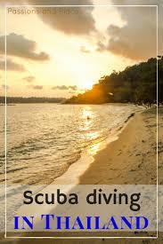 best 25 padi certification ideas on pinterest scuba diving