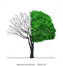 one half tree green leaves isolated stock illustration 152017517