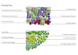 Flower Garden Layout Planner by Plant Portfolio Klc Google Search Garden Design Pinterest