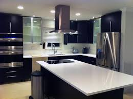 Ikea Modern Kitchen Cabinets Modern Design Italian Inspired Kitchen Using Ikea Cabinetry Ideas