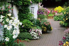 English Cottage Gardens Photos - diarmuid gavin u0027s top advice to achieve cottage charm in your
